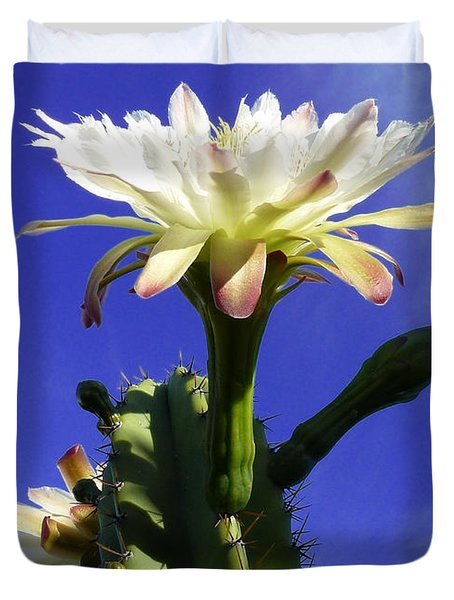 Flowering Cactus 3 Duvet Cover