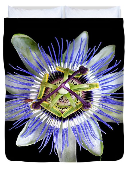 Duvet Cover featuring the photograph Fly's Passion by Jennie Breeze