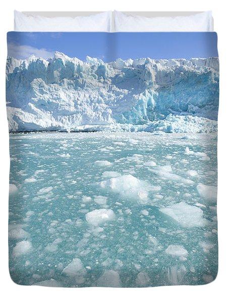 Fortuna Glacier Descending  Duvet Cover