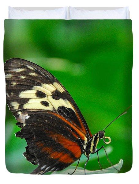 D5l15 Butterfly At Franklin Park Conservatory Duvet Cover