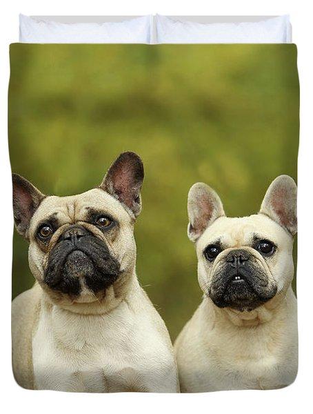 French Bulldogs Duvet Cover