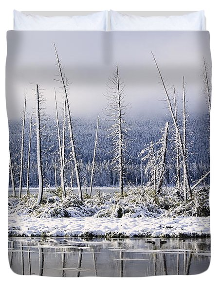 Fresh Snowfall And Bare Trees Duvet Cover by Ken Gillespie