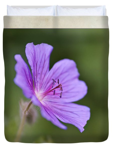 Geranium Maculatum Duvet Cover by John Edwards