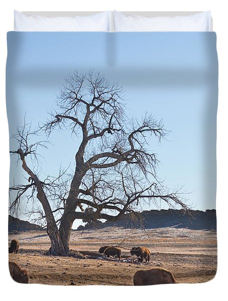 Give Me A Home Where The Buffalo Roam Duvet Cover by James BO  Insogna