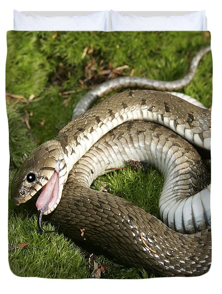 Grass Snake Playing Dead Duvet Cover