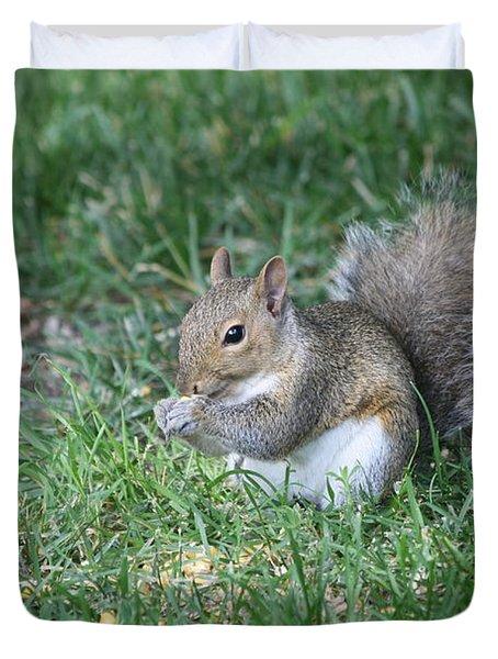 Grey Squirrel Duvet Cover by Lori Tordsen