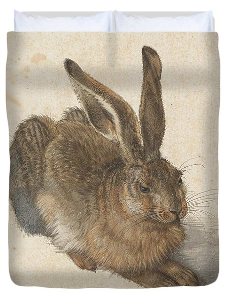 Young Hare Duvet Cover by Albrecht Durer