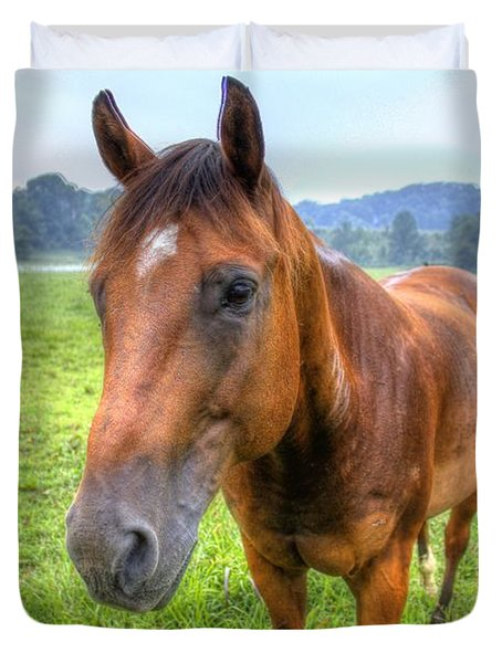 Horses In A Field Duvet Cover