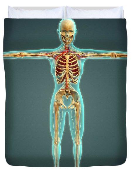 Human Body Showing Skeletal System Duvet Cover by Stocktrek Images