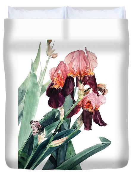 Watercolor Of A Pink And Maroon Tall Bearded Iris I Call Iris La Forza Del Destino Duvet Cover