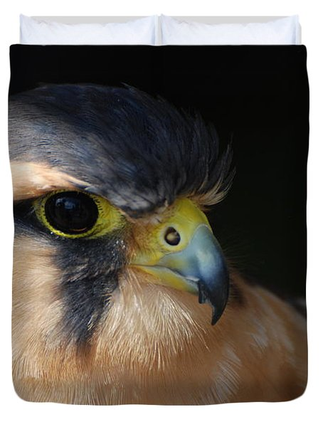 Kestrel Falcon Duvet Cover