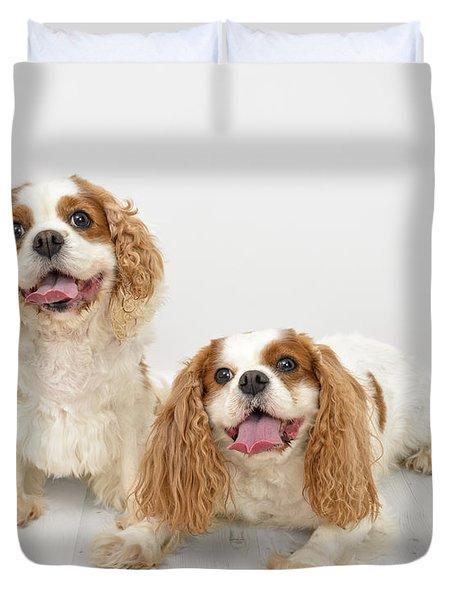 King Charles Spaniel Dogs Duvet Cover