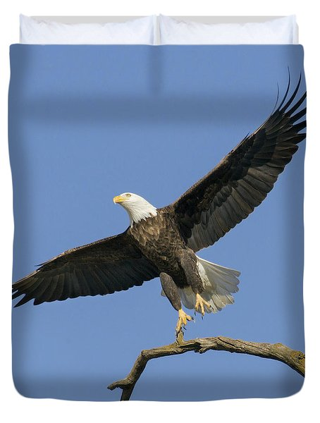 King Of The Sky 3 Duvet Cover