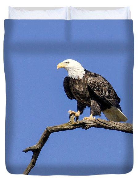 King Of The Sky Duvet Cover