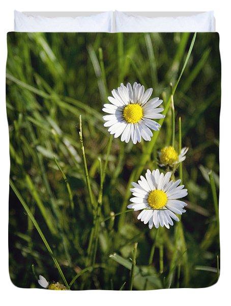 Little White Daisies Duvet Cover