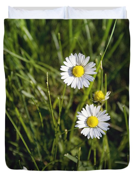 Little White Daisies Duvet Cover