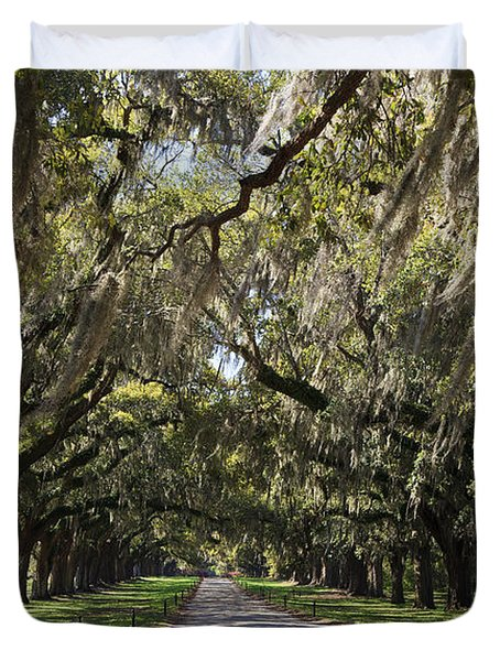 Live Oaks Duvet Cover