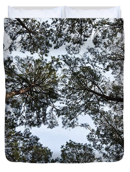 Loblolly Pine Forest Canopy Duvet Cover