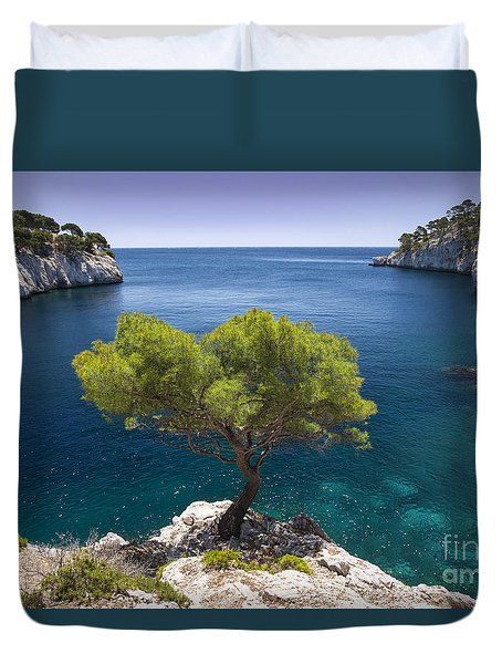 Duvet Cover featuring the photograph Lone Pine Tree by Brian Jannsen
