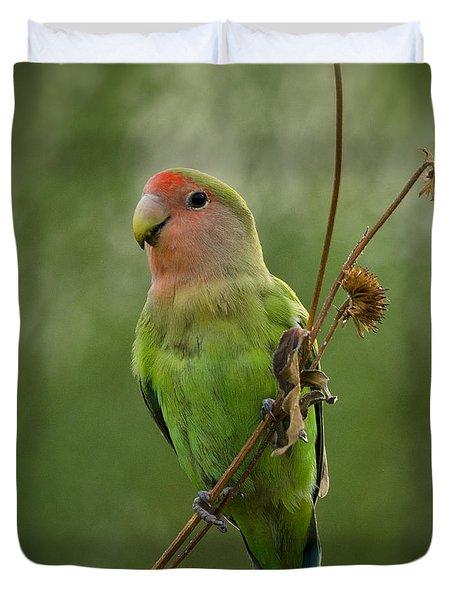 Lovely Little Lovebird  Duvet Cover by Saija  Lehtonen