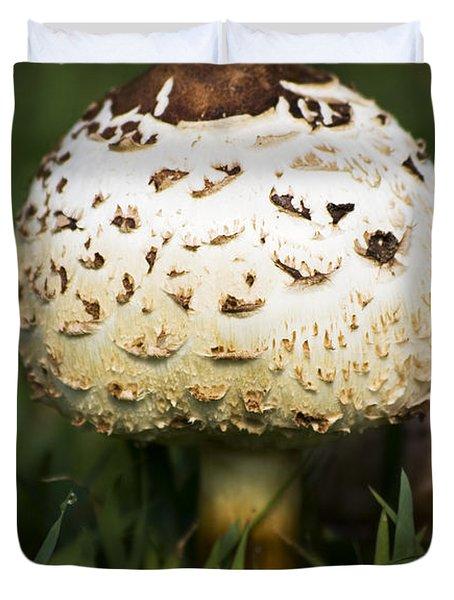 Magic Mushroom Duvet Cover by Jorgo Photography - Wall Art Gallery