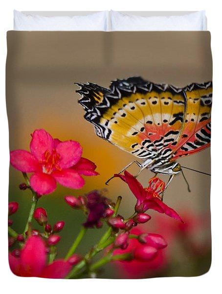 Malay Lacewing Butterfly  Duvet Cover by Saija  Lehtonen