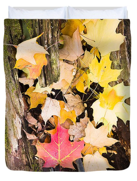 Maple Leaves Duvet Cover by Steven Ralser