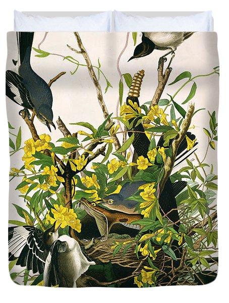 Mocking Birds And Rattlesnake Duvet Cover by John James Audubon