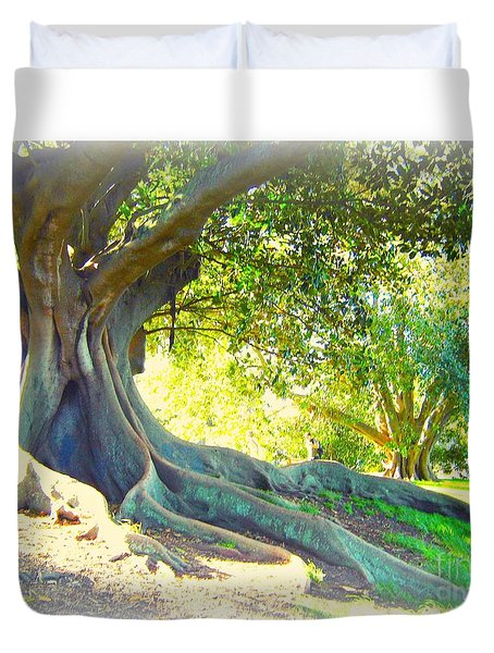 Morton Bay Fig Tree Duvet Cover by Leanne Seymour