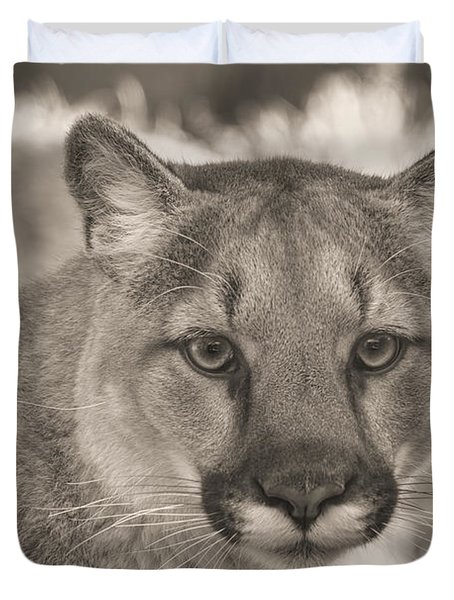 Mountain Lion  Duvet Cover