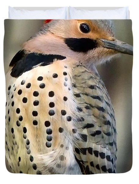Northern Flicker Duvet Cover by Bill Wakeley