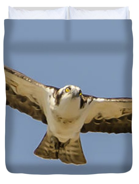 Osprey In Flight Duvet Cover by Dale Powell
