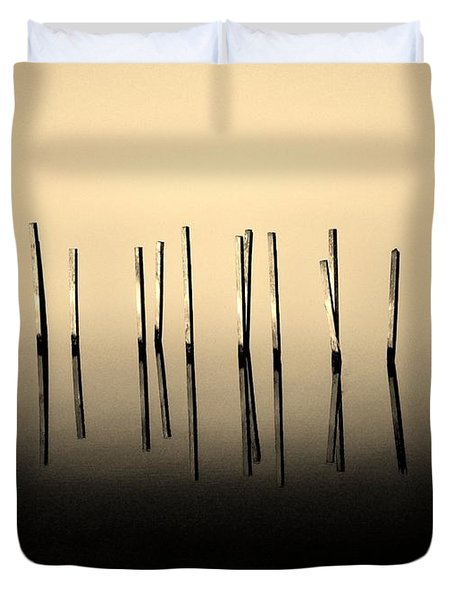 Palisade Duvet Cover by Robert Geary