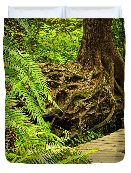 Path In Temperate Rainforest Duvet Cover