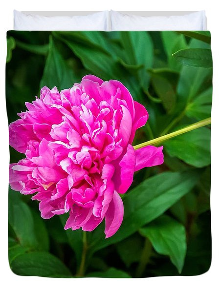 Peony Duvet Cover by Steve Harrington