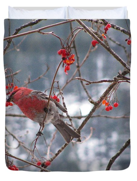Pine Grosbeak And Mountain Ash Duvet Cover by Leone Lund