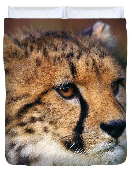 Portrait Of A Cheetah Cub Duvet Cover by Nick  Biemans
