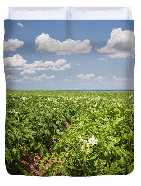 Potato Field In Prince Edward Island Duvet Cover