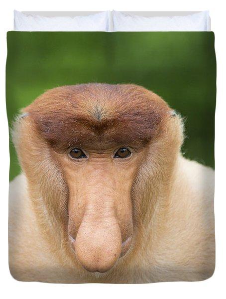 Proboscis Monkey Dominant Male Sabah Duvet Cover