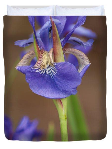 Purple Bearded Iris Duvet Cover