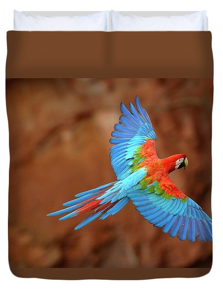Red And Green Macaw Flying Duvet Cover by Pete Oxford
