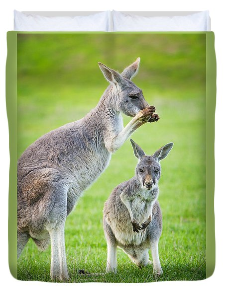 Red Kangaroos Duvet Cover