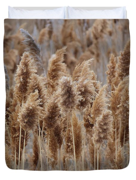 Wind Blown Redish Brown Plants Duvet Cover
