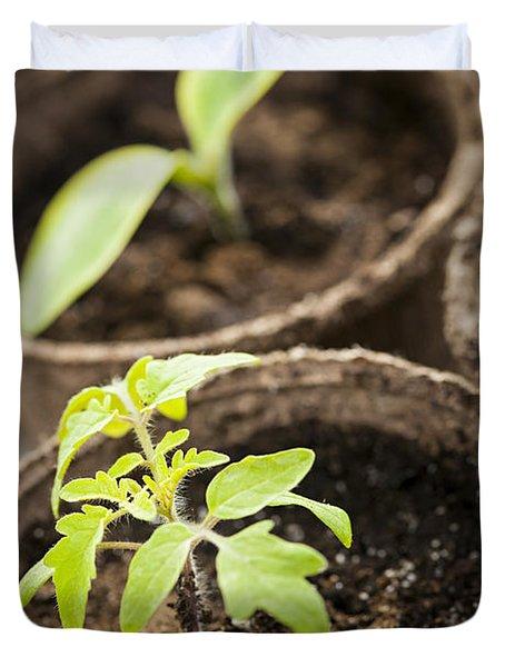 Seedlings  Duvet Cover