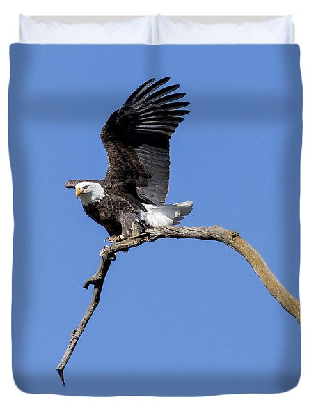Smooth Landing 4 Duvet Cover