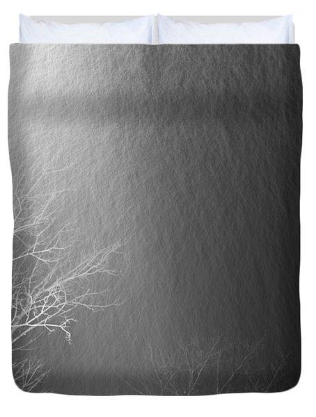Snowfall Duvet Cover
