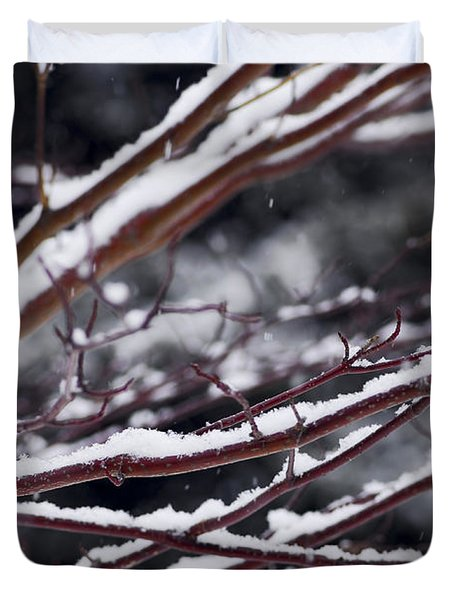Snowfall And Tree Duvet Cover by Elena Elisseeva