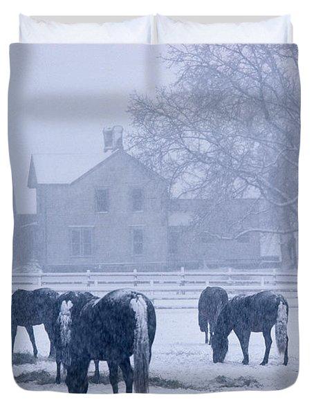Snowfall Corral Duvet Cover