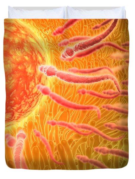 Sperm Traveling Towards Egg With Cellia Duvet Cover by Stocktrek Images