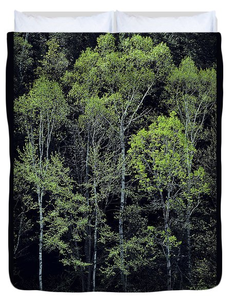 Duvet Cover featuring the photograph Spring Lights by Alan L Graham